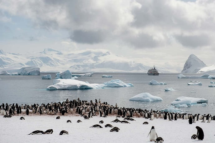 секреты антарктиды фото так